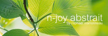N-JOY Radio by Raphaël Marionneau